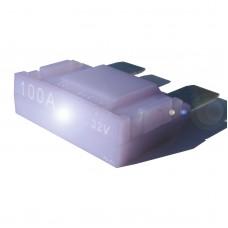 10 Pack-Intelligent 100 amp Maxi Blade Fuse